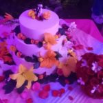Turtle Bay Cafe Wedding Cakes 1